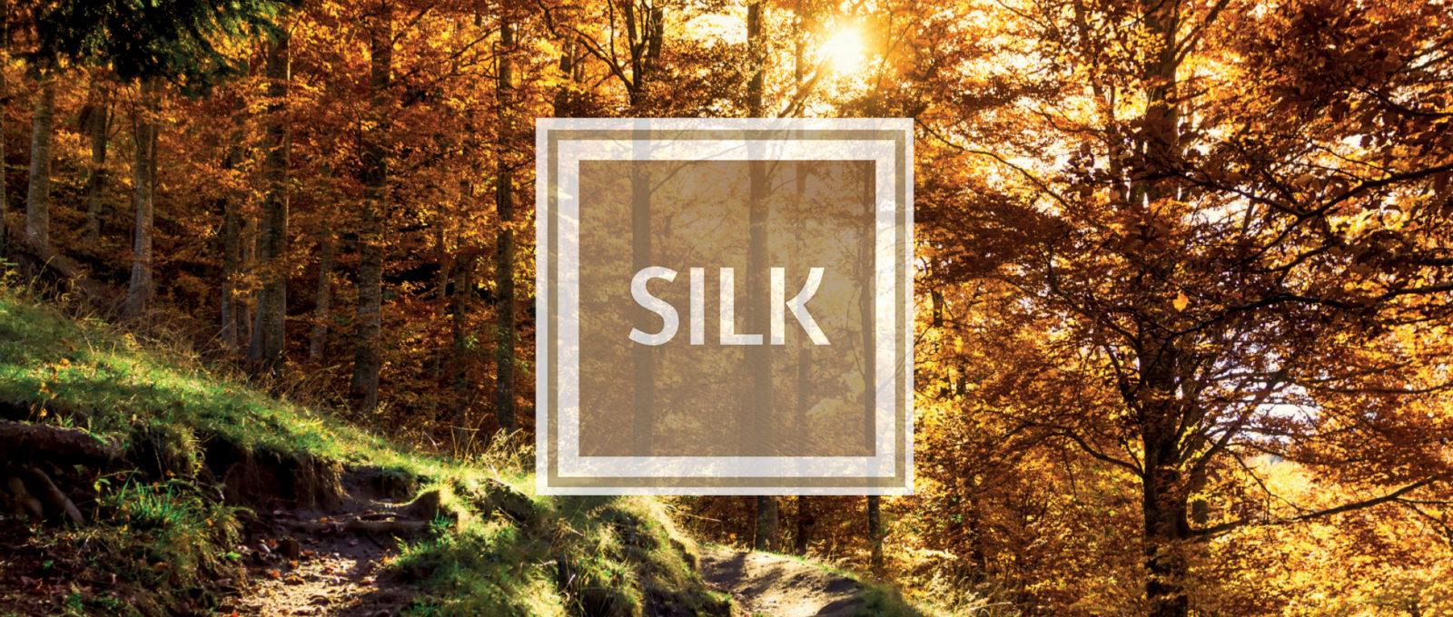 Slide Alu&Wood